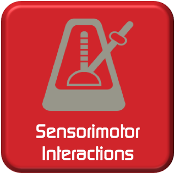 Sensorimotor Interactions